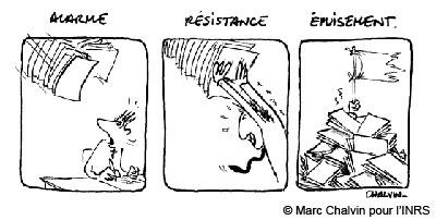 Réaction en 3 phases de l'organisme face à une situation stressante : alarme, résistance et épuisement